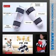 WOW SPORTS Arm Protector  For Taekwondo